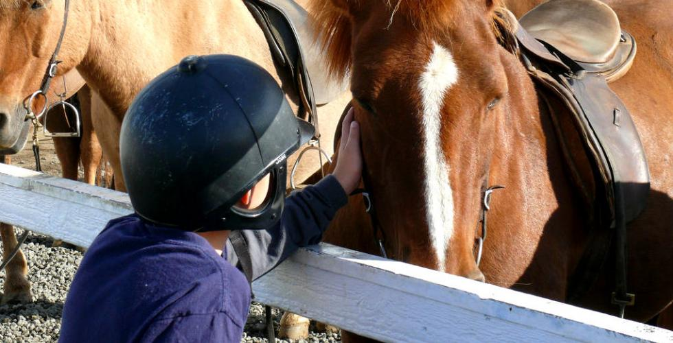image of boy with horse