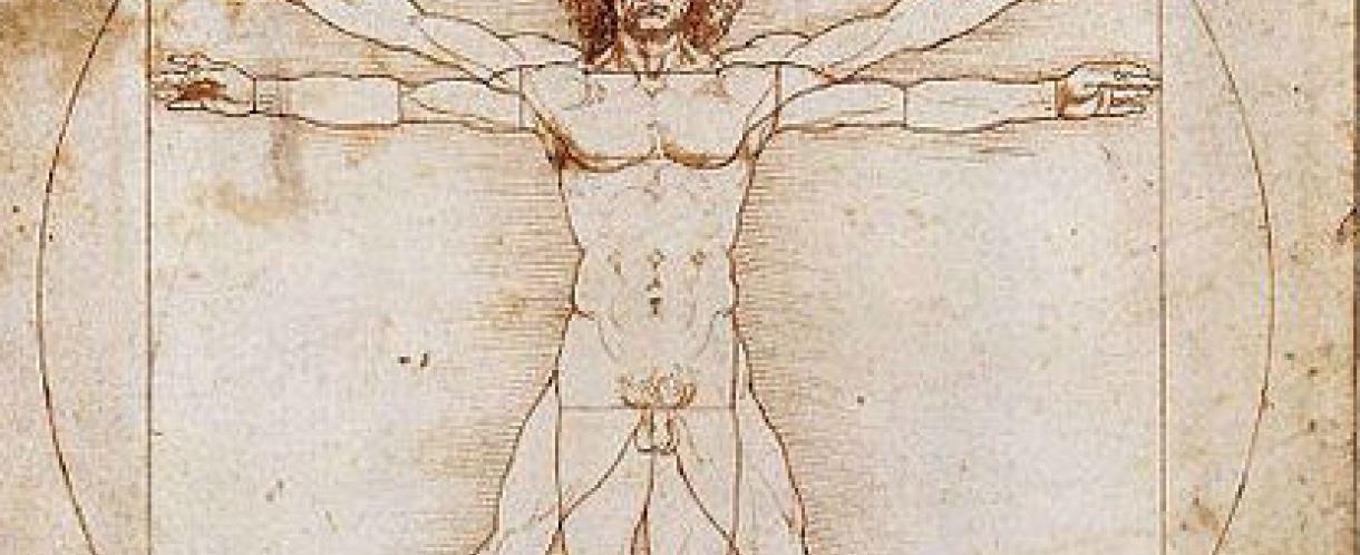 Da Vinci Vitruvian man