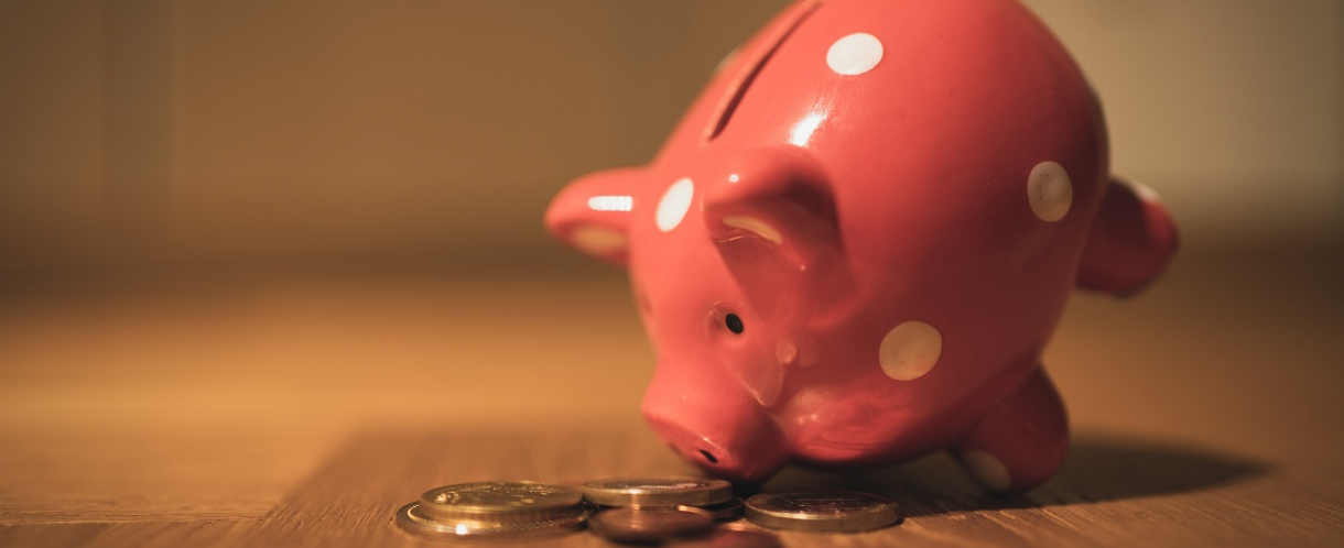 Image of piggy bank