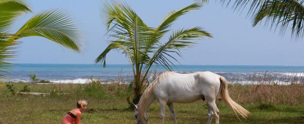 Natasha with one of her horses in Costa Rica